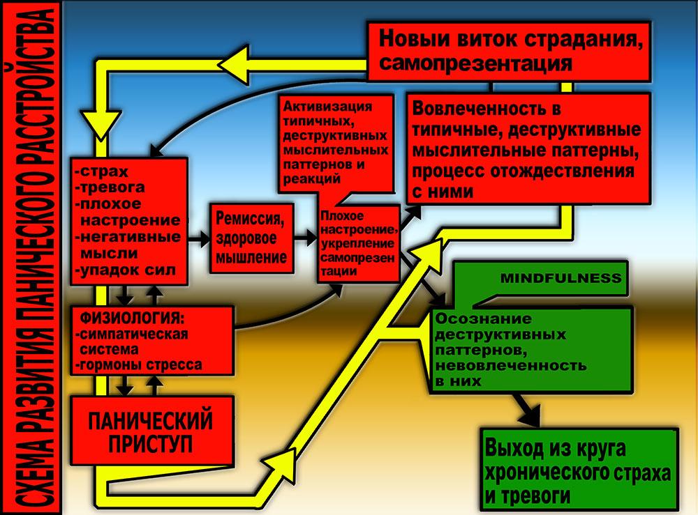Схема 1. Первичные и вторичные взаимоподкрепляющие круги панического расстройства.
