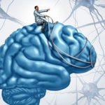 Карма мозга: обречены ли мы жить виллюзии?
