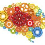 7 привычек для здоровья мозга