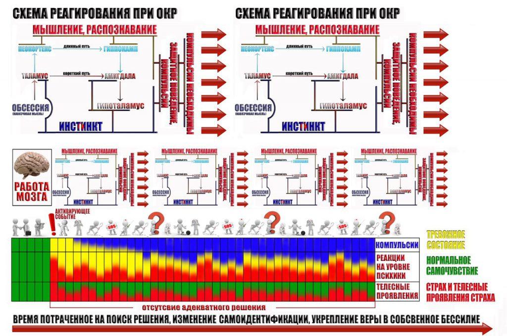 shema-trevozhnogo-reagirovaniya-10