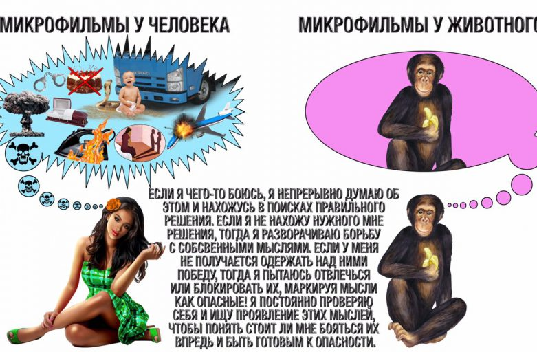 shema-trevozhnogo-reagirovaniya-17