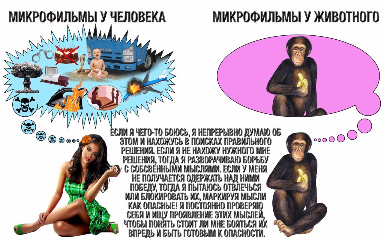 Сексуальные образы и мысли в числе симптомов окр