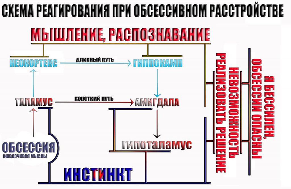 shema-trevozhnogo-reagirovaniya-4