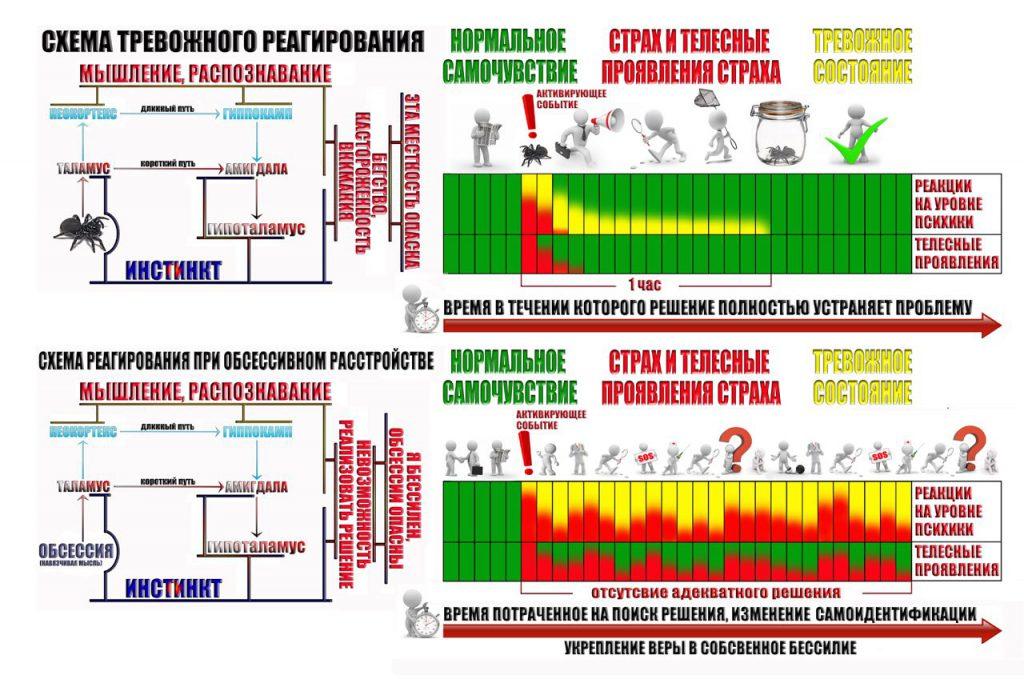 shema-trevozhnogo-reagirovaniya-6